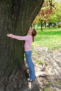 Enfant qui serre un arbre dans ses bras